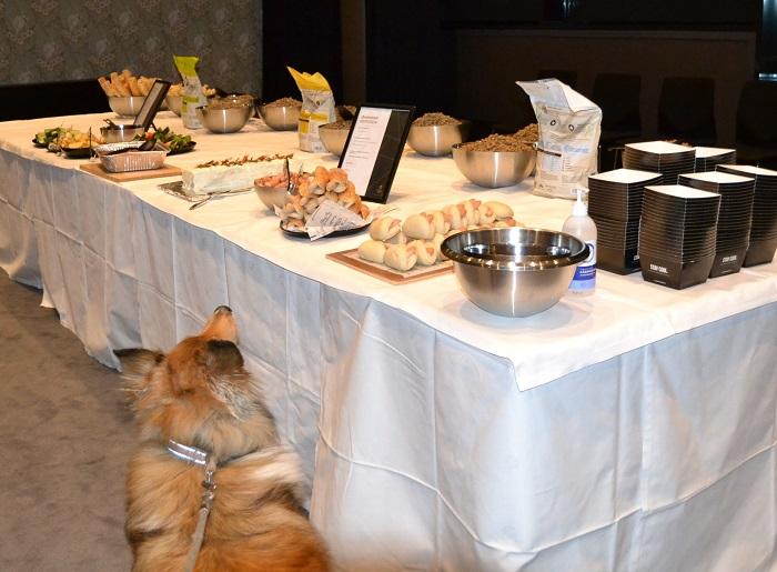Kaisla oli mukana valitsemassa itselleen herkkuja koirien omasta buffetista.
